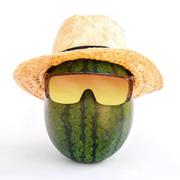 Watermelon86's Avatar