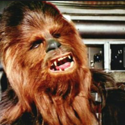 NudeWookie's Avatar