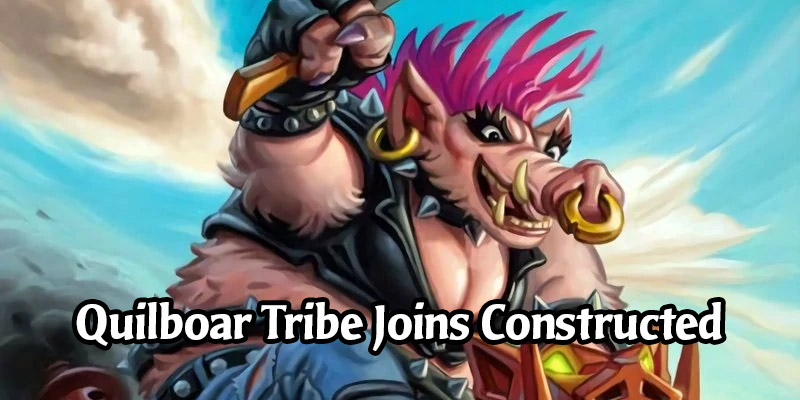 Quilboar Officially Becomes a Tribe in Hearthstone! 13 Collectible Cards Get the Tribe Tag