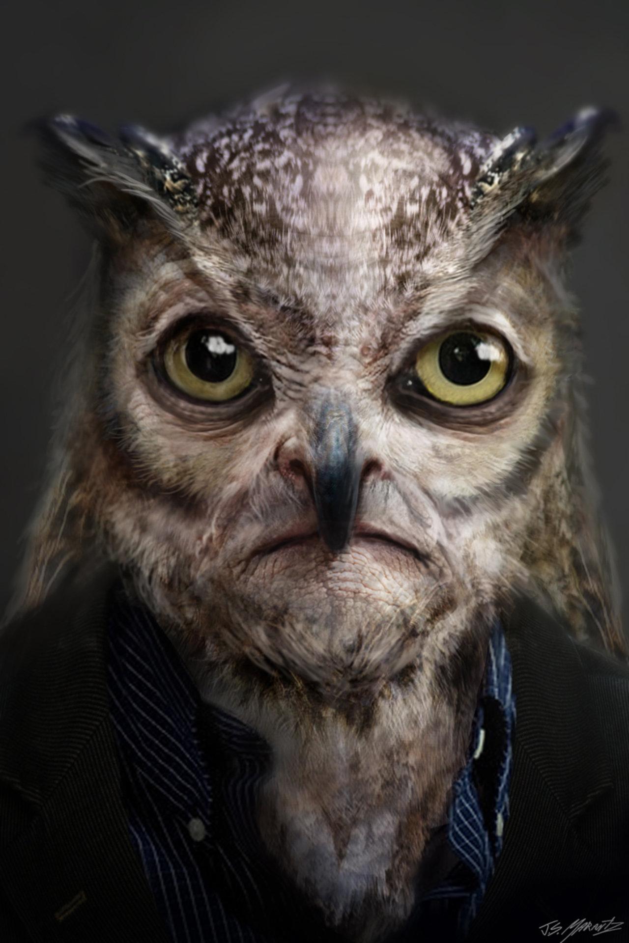 OwlNation's Avatar