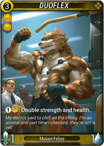Duoflex Card Image
