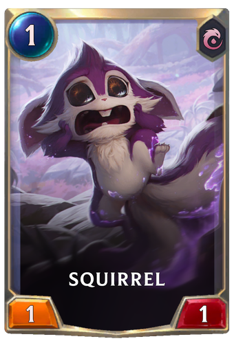 Squirrel Card Image