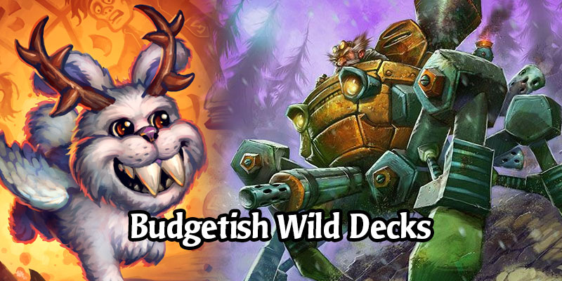 Six Awesome Wild Decks That Won't Break Your Budget