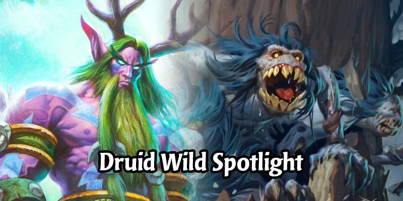 Nature Will Rise Against You! Darkmoon Faire Druid Wild Deck Spotlight