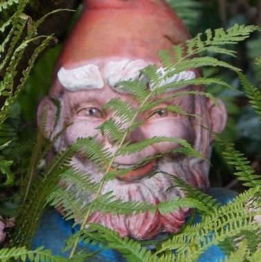 ObviousGnome's Avatar